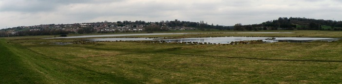 Floodplain grazing marsh at Wombwell Ings header